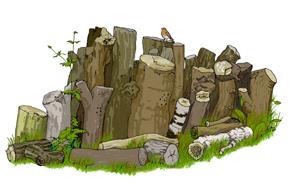 Invertebrates log pile