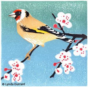 Goldfinch linocut illustration