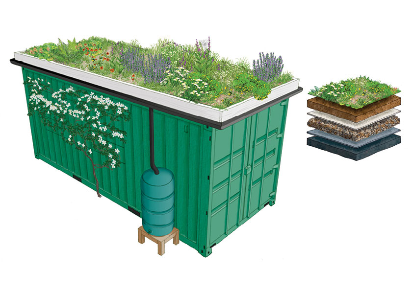 Shipping container green roof