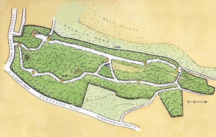 map of Sydenham Hill Wood