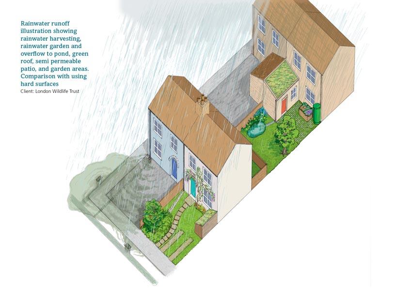 Rainwater runoff 2 houses