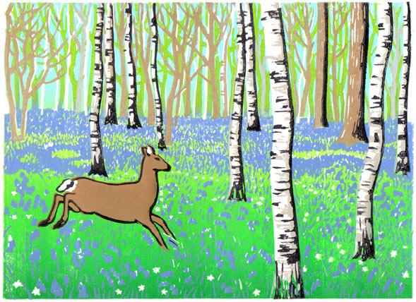 Deer in bluebell woods