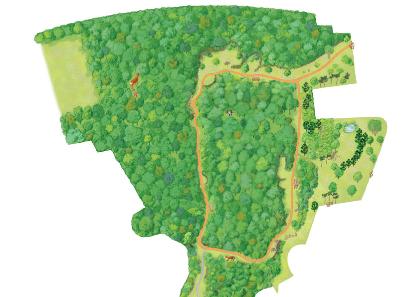 Queen Mary's Woodland map