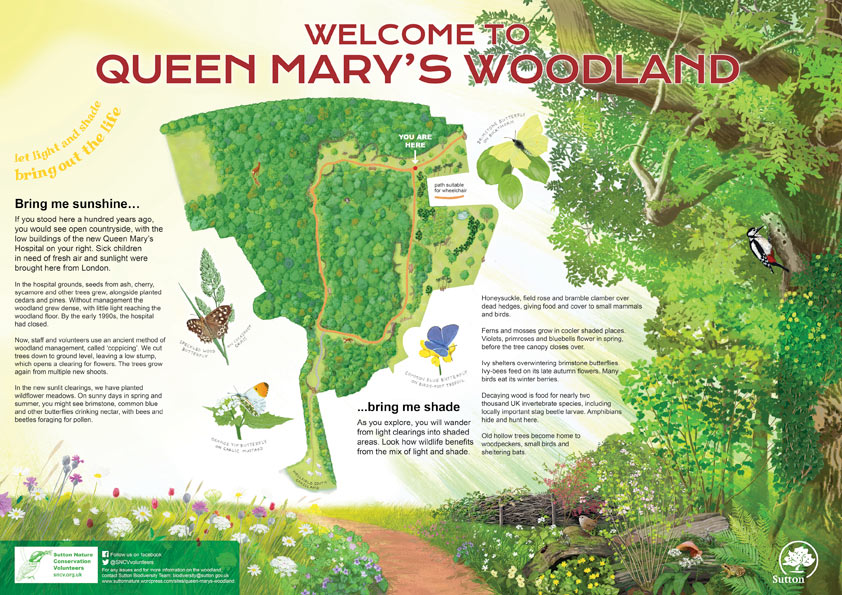 Queen Mary's Woodland interpretation panel
